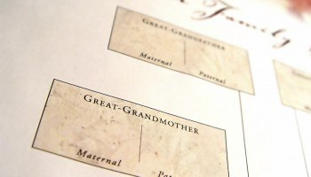 Section of a family tree regarding great grandparents.